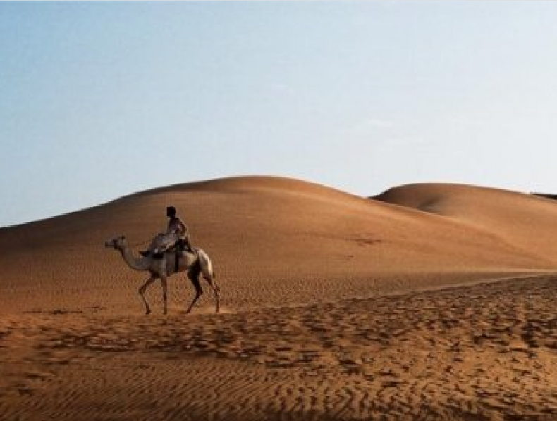 Pfizer Award – Sudan – Cameraman: Dave Depares